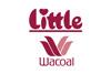 LITTLE WACOAL